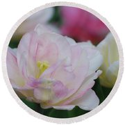 Very Pretty Pale Pink Parrot Tulip Flower Blossom Round Beach Towel