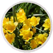 Very Sunny Yellow Flowers Round Beach Towel