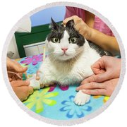 Vet Cannula Needle Injection Round Beach Towel