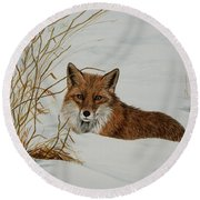 Vexed Vixen - Red Fox Round Beach Towel