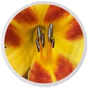 Vibrant Lilly Round Beach Towel