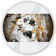 Vignettes - Indigo Winter Berries Round Beach Towel