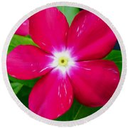 Vinca Flower Round Beach Towel