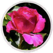 Vincent Red Rose Round Beach Towel