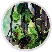 Vine And Trellis Digital Watercolor 4472 W_2 Round Beach Towel