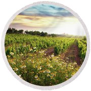 Vineyard Round Beach Towel by Carlos Caetano