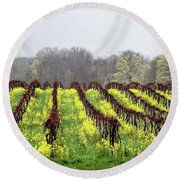 Vineyard In Westfield Round Beach Towel