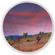 Vineyards At Sunset In Spain Round Beach Towel