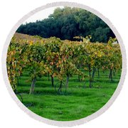 Vineyards In California Round Beach Towel