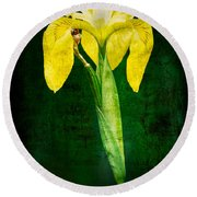 Vintage Canna Lily Round Beach Towel