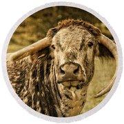 Vintage Longhorn Cattle Round Beach Towel