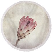 Vintage Protea Flower Round Beach Towel