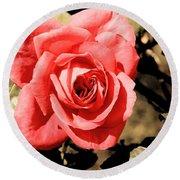 Vintage Rose 02 Round Beach Towel