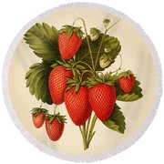 Vintage Strawberries Round Beach Towel