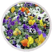 Viola In The Spring Are Especially Beautiful. Round Beach Towel