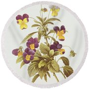 Viola Tricolour  Round Beach Towel by Pierre Joseph Redoute