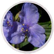 Violet Blooms Round Beach Towel