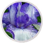 Violet Iris Round Beach Towel
