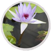 Violet Lotus Round Beach Towel