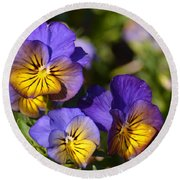Violets 15-01 Round Beach Towel