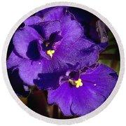 Violets Round Beach Towel