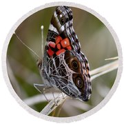 Virginia Lady Butterfly Side View Round Beach Towel