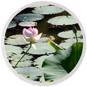 Visit To Lilly Pond Round Beach Towel