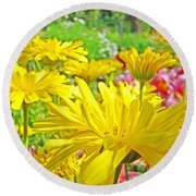 Vivid Colorful Yellow Daisy Flowers Daisies Baslee Troutman Round Beach Towel