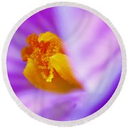 Vivid Crocus Detail Round Beach Towel