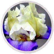Vivid Iris 6622 H_3 Round Beach Towel