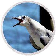 Vocal Sea Gull Round Beach Towel