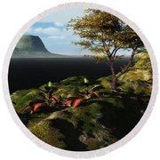 Volcano View Round Beach Towel