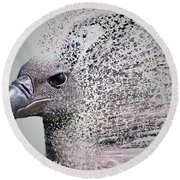 Vulture Break Up Round Beach Towel
