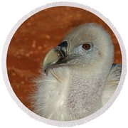 Vulture Portrait Round Beach Towel