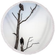 Vultures Perched In A Dead Tree Round Beach Towel