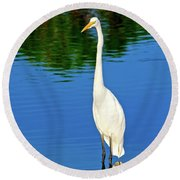 Wading Great White Egret Round Beach Towel