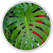 Waikiki Split Leaf Round Beach Towel