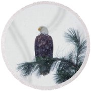 Waiting Out The Snow Round Beach Towel