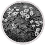 Wallflower Ain't So Bad Bw Round Beach Towel