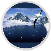 Wandering Albatross Over The Le Maire Channel Round Beach Towel