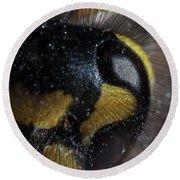 Wasp Eye Round Beach Towel