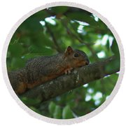 Watching From Above Round Beach Towel