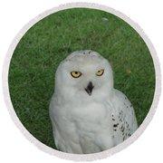 Watching Owl Round Beach Towel