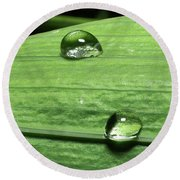 Water Droplet On A Leaf Round Beach Towel