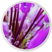 Water Droplets And Purple Flower Round Beach Towel