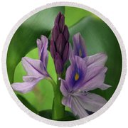 Water Hyacinth Round Beach Towel