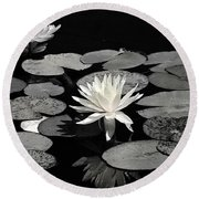 Water Lilies In Black And White Round Beach Towel