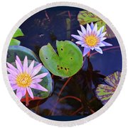 Water Lilies In Kauai Round Beach Towel