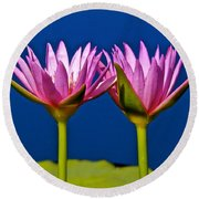 Water Lilies Touching Round Beach Towel