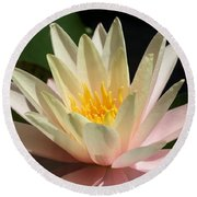 Water Lilly 1 Round Beach Towel